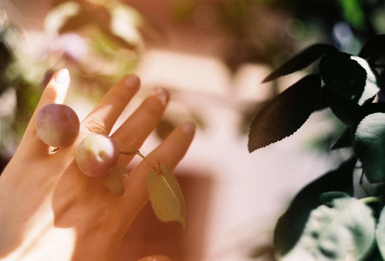 main et fruits TOUCHER